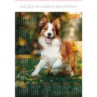 Kalendarz Plakatowy B1, P18 - PIES 67x98cm TELEGRAPH