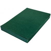 Karton DELTA skóropodobny zielony A4 DATURA/NATUNA 100szt.