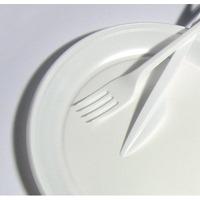 Talerzyki jednorazowe 17cm (100szt) ) białe/15cm