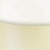 Karton wiz.A4 ORNAMENT biały 230g (20) ARGO 205103